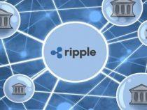 Đồng Ripple là gì? XPR là gì? Cách mua? Giá đang tăng hay giảm?
