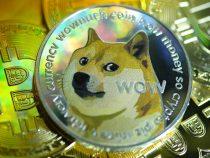 Đồng Dogecoin là gì? Có tiềm năng không? Giá hôm nay 2021